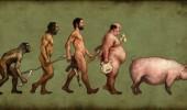 evolucija-muskarca