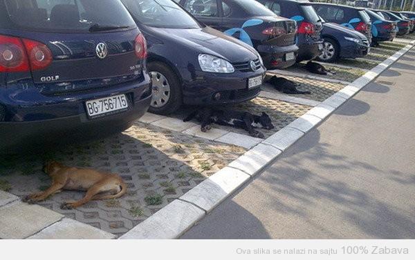 Parkirani