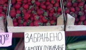 zabrana-za-jagode