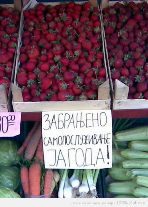 Zabrana za jagode